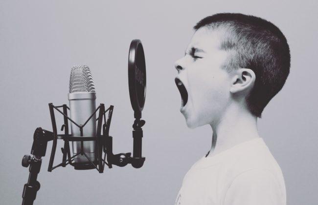 Mikrofon Gutt Studio