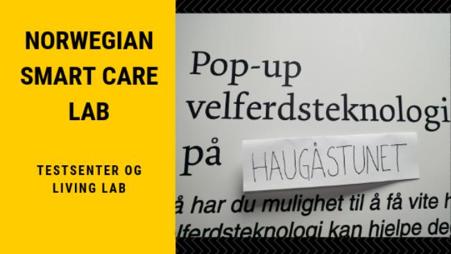 Norwegian Smart Care Lab 1